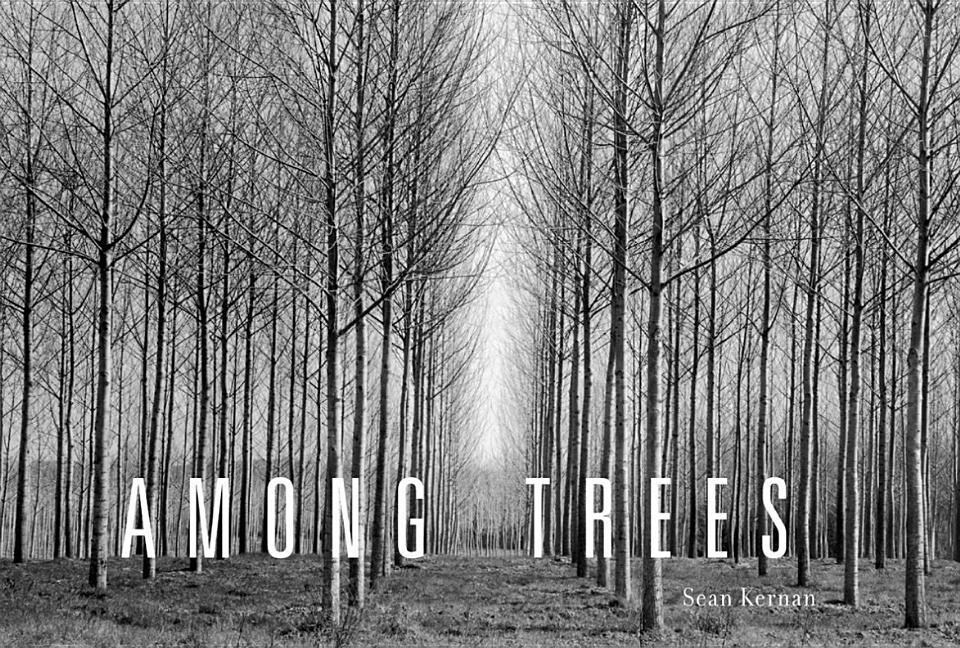 Among Trees als Buch