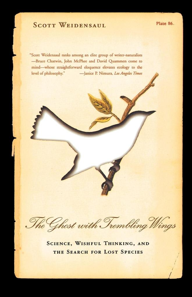 The Ghost with Trembling Wings: Science, Wishful Thinking and the Search for Lost Species als Taschenbuch