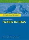 Tauben im Gras von Wolfgang Koeppen.