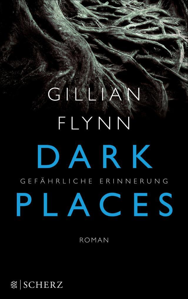 Dark Places - Gefährliche Erinnerung als eBook von Gillian Flynn