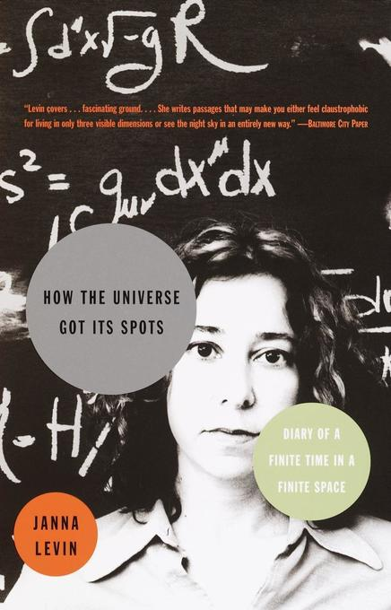 How the Universe Got Its Spots: Diary of a Finite Time in a Finite Space als Taschenbuch