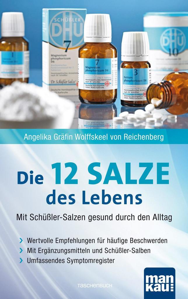 Die 12 (Zwölf) Salze des Lebens - Mit Schüßler-Salzen gesund durch den Alltag als Taschenbuch