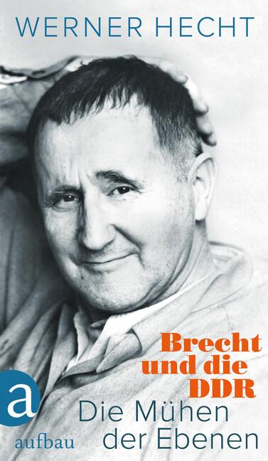 Die Mühen der Ebenen als Buch von Werner Hecht