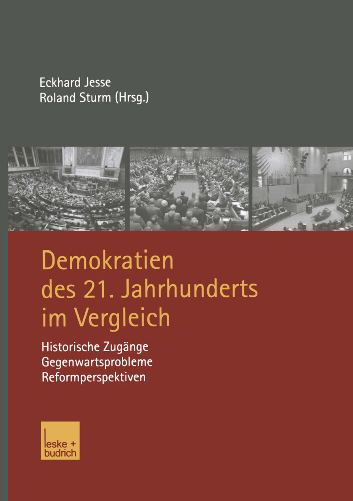 Demokratien des 21. Jahrhunderts im Vergleich als Buch