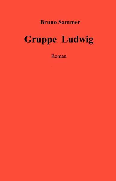 Gruppe Ludwig als Buch