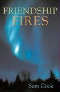 Friendship Fires als Taschenbuch
