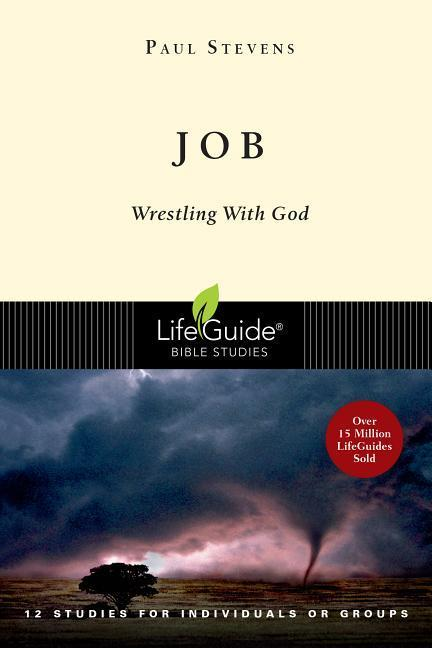 Job: Wrestling with God als Taschenbuch