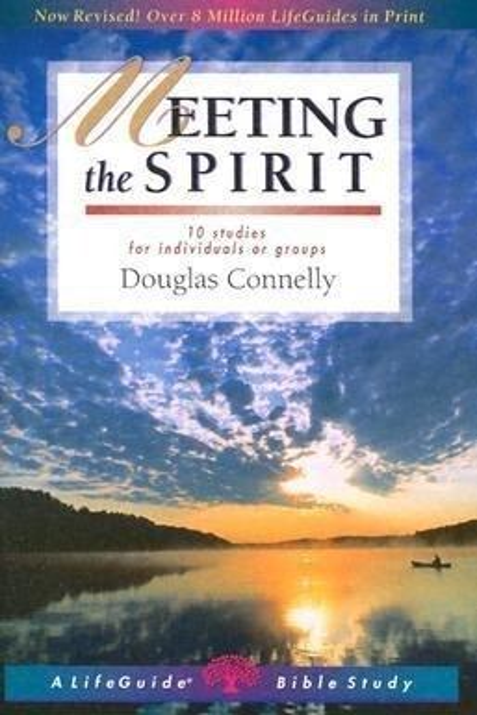 Meeting the Spirit als Taschenbuch