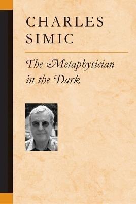 The Metaphysician in the Dark als Taschenbuch