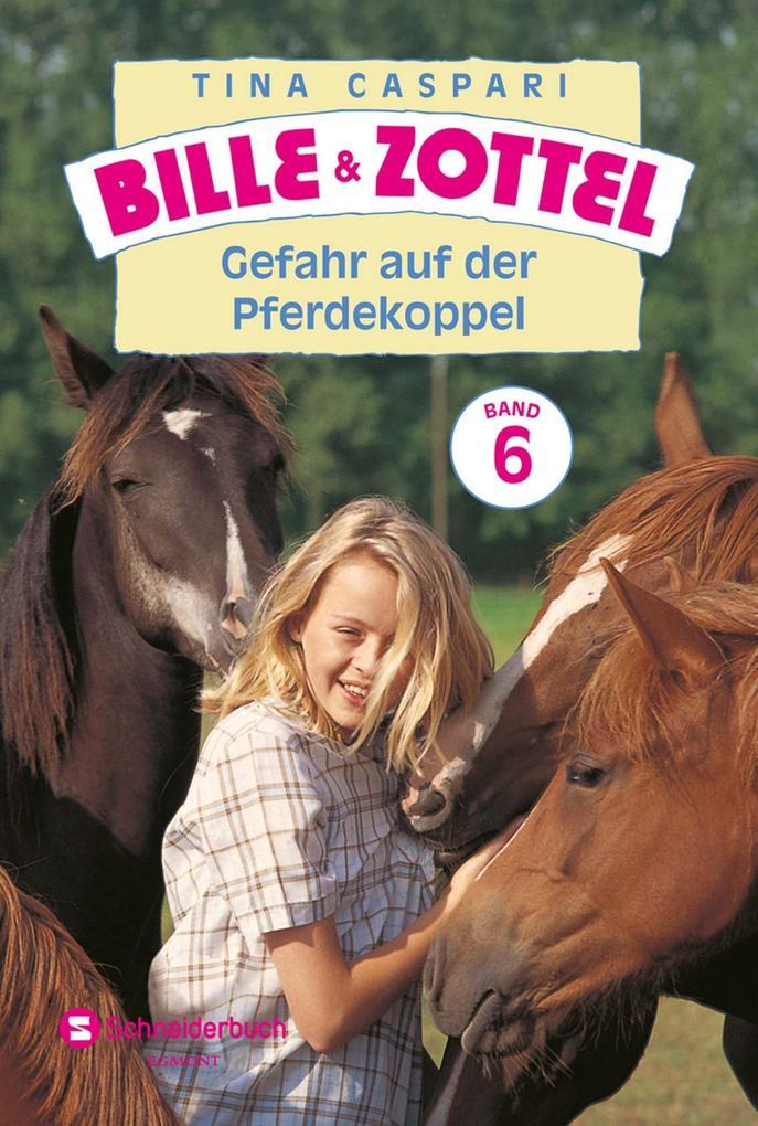 Bille und Zottel Bd. 06 - Gefahr auf der Pferdekoppel als eBook von Tina Caspari