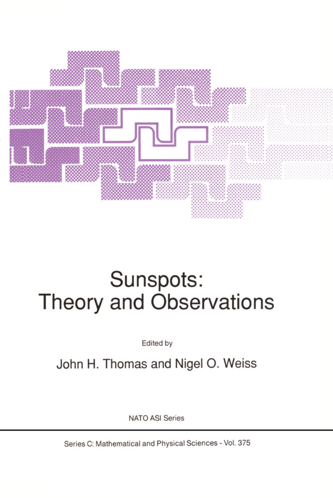 Sunspots: Theory and Observations als Buch