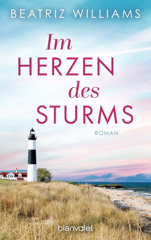 Im Herzen des Sturms als eBook