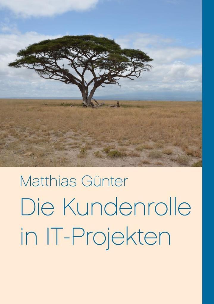 Die Kundenrolle in IT-Projekten als eBook von M...