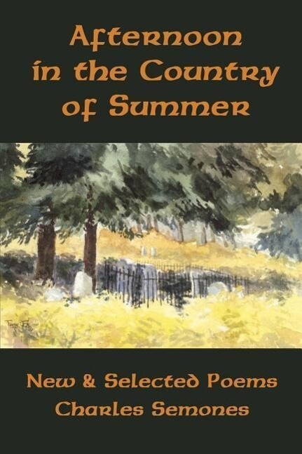 Afternoon in the Country of Summer als Taschenbuch