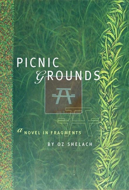 Picnic Grounds: A Novel in Fragments als Taschenbuch