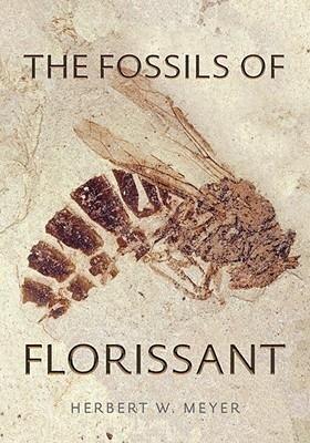 The Fossils of Florissant als Taschenbuch