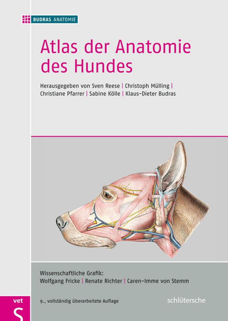 BUDRAS ANATOMIE: Atlas der Anatomie des Hundes (eBook) - bei eBook.de