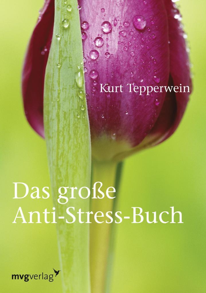 Das große Anti-Stress-Buch als eBook