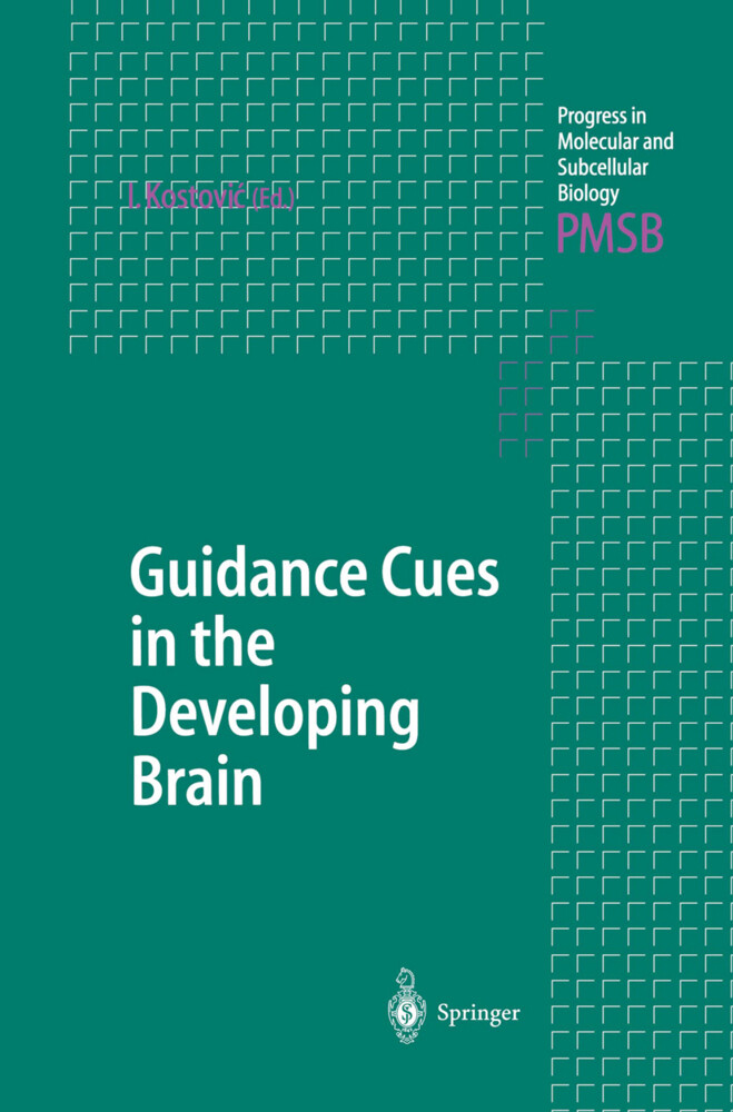 Guidance Cues in the Developing Brain als Buch