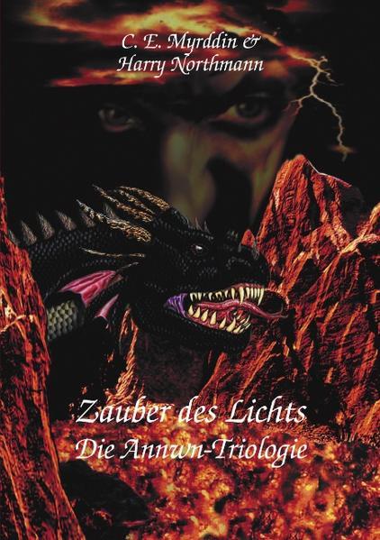 Zauber des Lichts als Buch