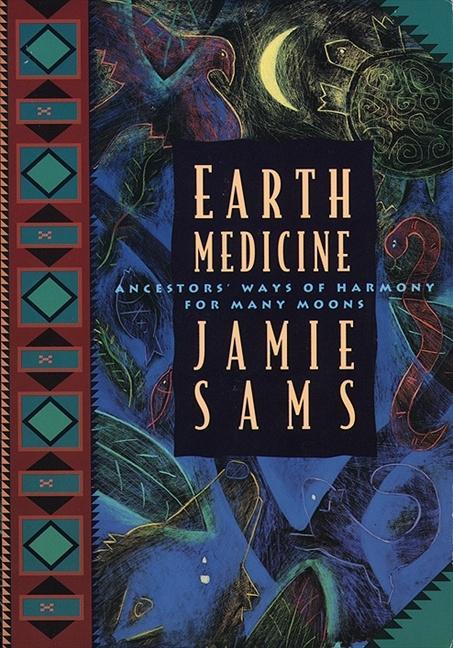 Earth Medicine als Taschenbuch