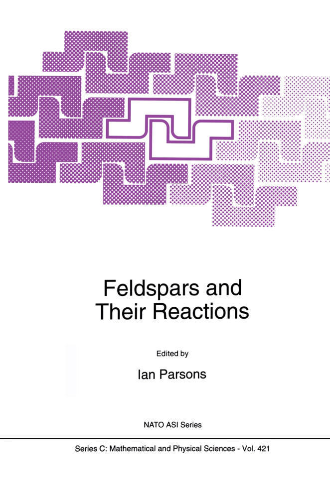 Feldspars and their Reactions als Buch