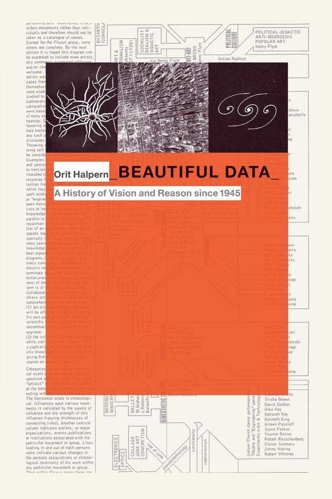 Beautiful Data als Buch