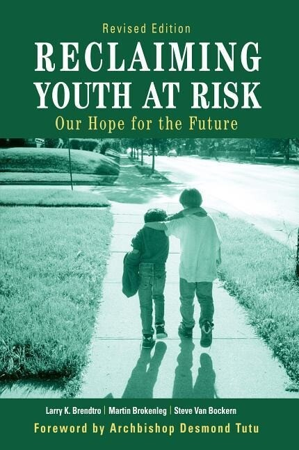 Reclaiming Youth at Risk: Our Hope for the Future als Taschenbuch