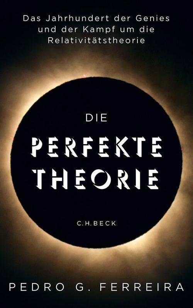 Die perfekte Theorie als eBook