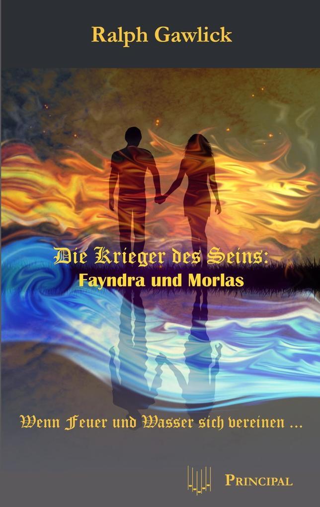 Die Krieger des Seins: Fayndra und Morlas als eBook