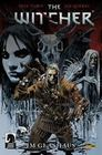 The Witcher 01