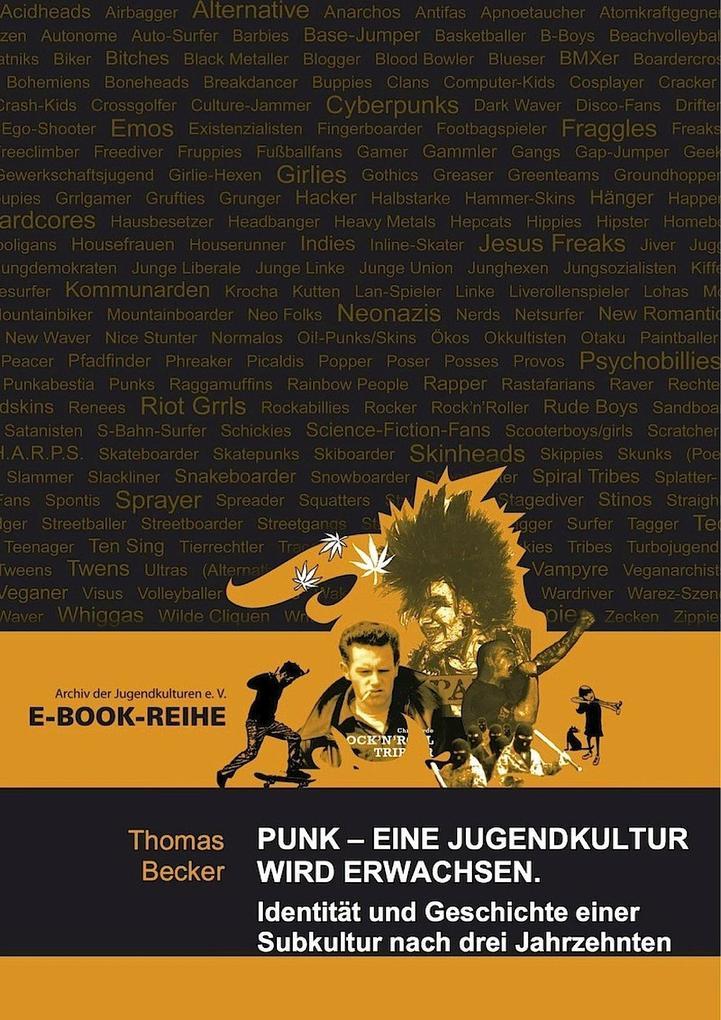 Punk - Eine Jugendkultur wird erwachsen als eBook