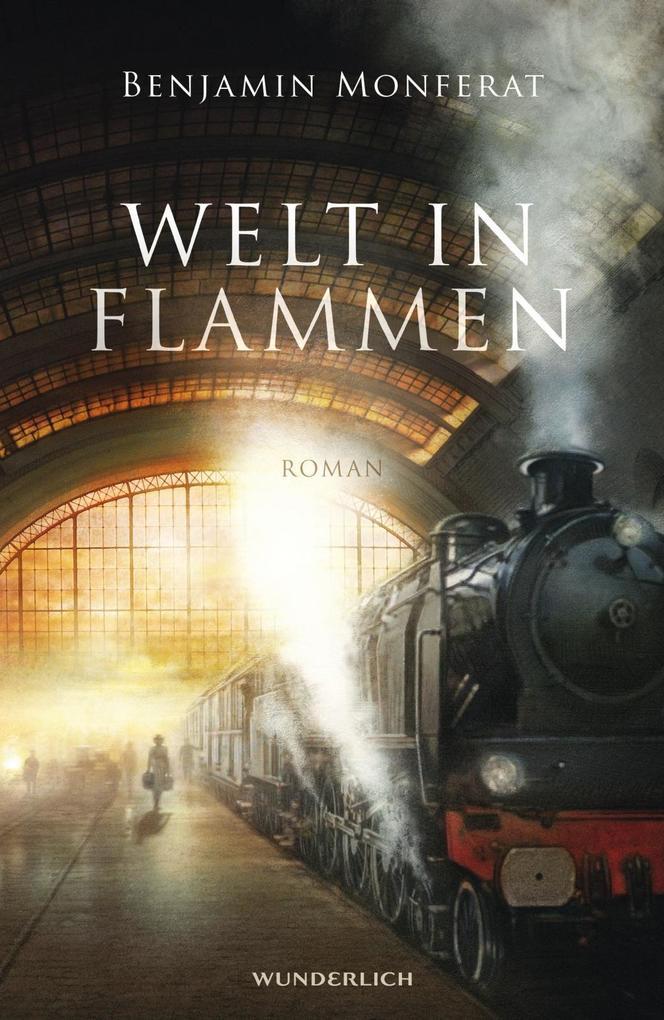 Welt in Flammen als Buch