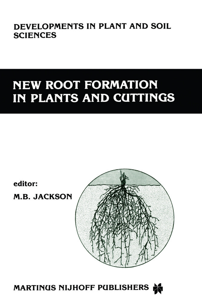New Root Formation in Plants and Cuttings als Buch
