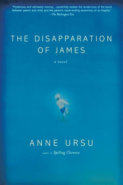 The Disapparation of James als Taschenbuch