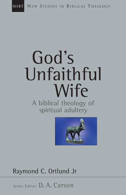 God's Unfaithful Wife: A Biblical Theology of Spiritual Adultery als Taschenbuch