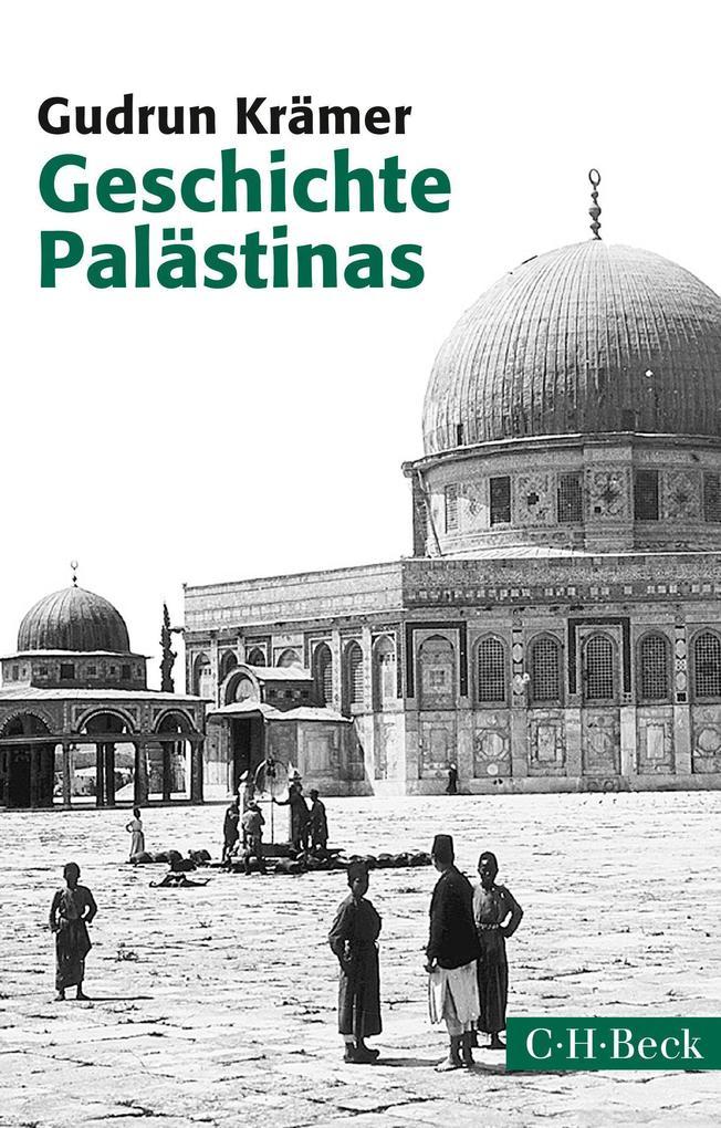 Geschichte Palästinas als Taschenbuch