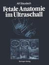 Fetale Anatomie im Ultraschall