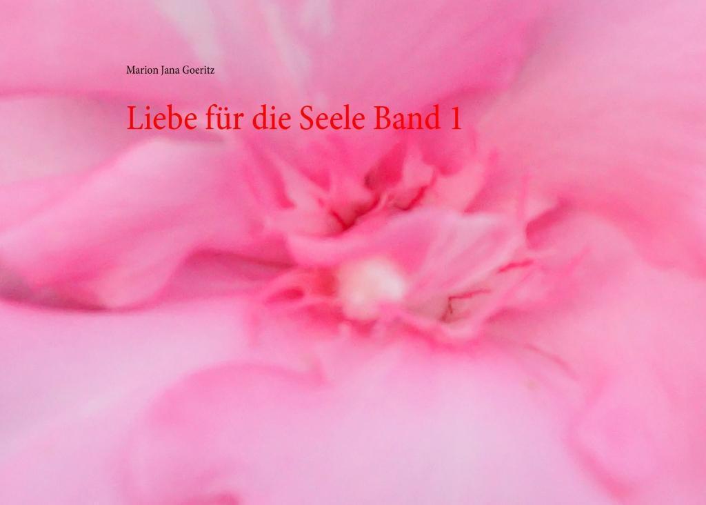 Liebe für die Seele Band 1 als eBook