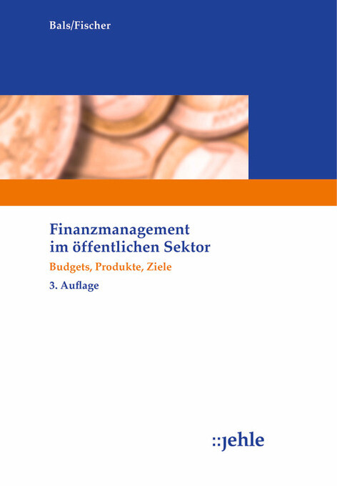 Finanzmanagement im öffentlichen Sektor als eBook