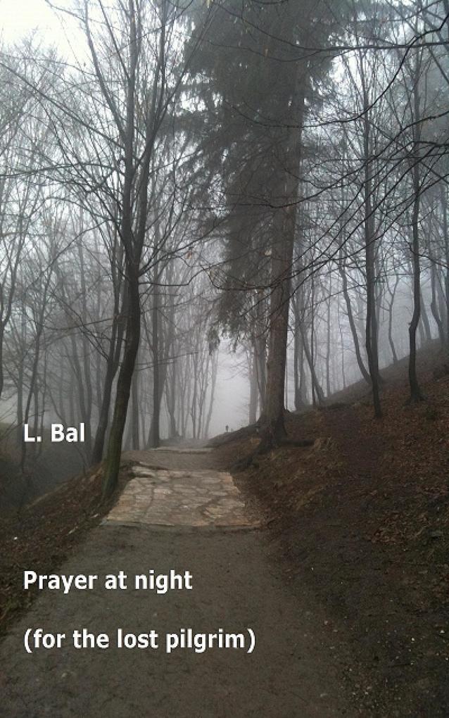 Prayer at night als eBook