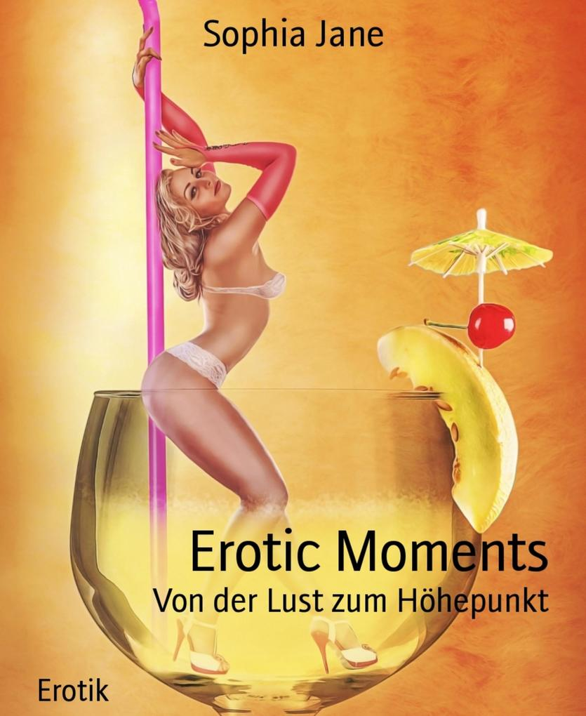 Erotic Moments als eBook epub