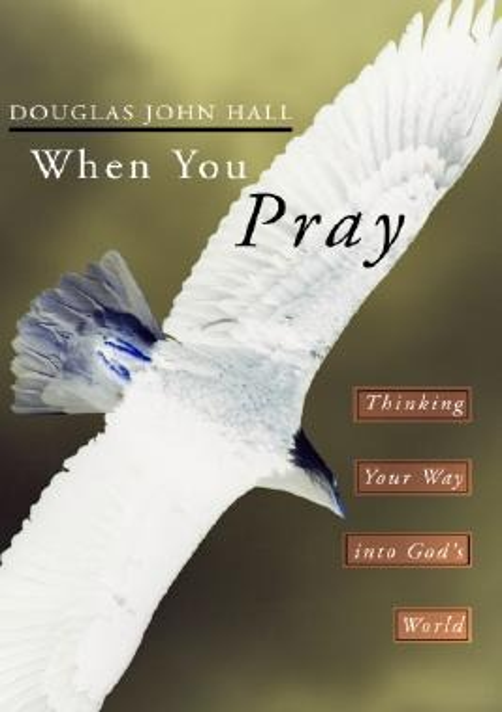 When You Pray: Thinking Your Way Into God's World als Taschenbuch