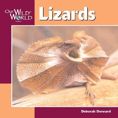 Lizards als Taschenbuch