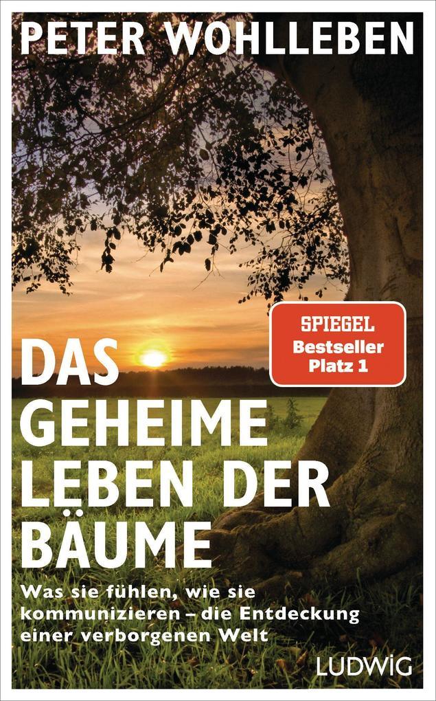 Das geheime Leben der Bäume als Buch (gebunden)