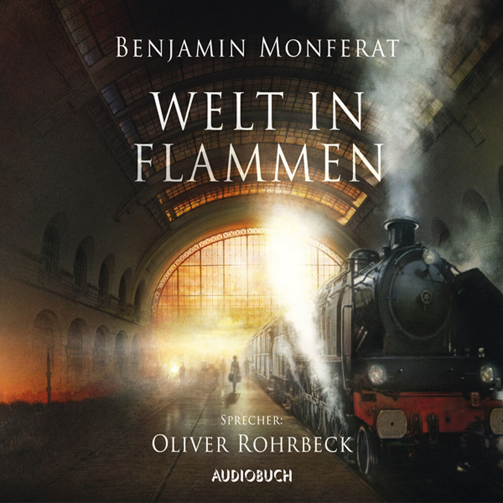 Welt in Flammen als Hörbuch Download
