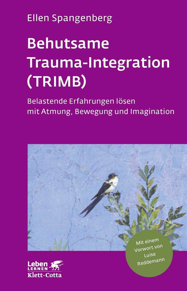 Behutsame Trauma-Integration (TRIMB) als eBook