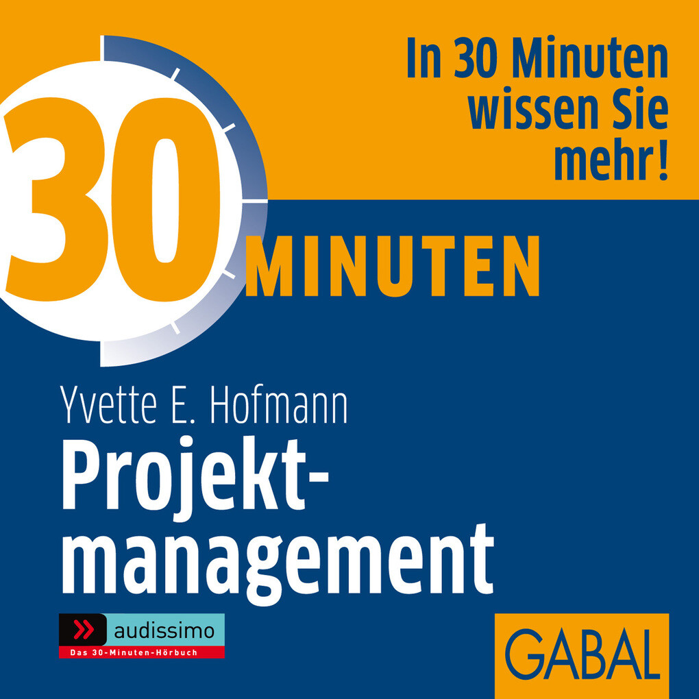 30 Minuten Projektmanagement als Hörbuch Download