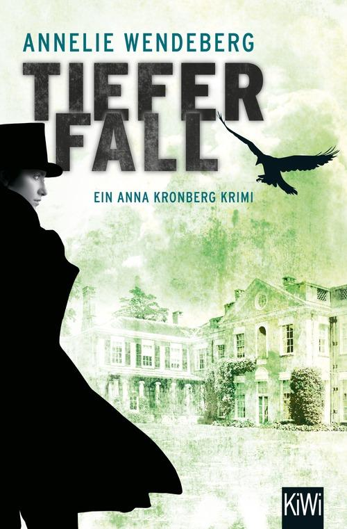 Tiefer Fall als eBook