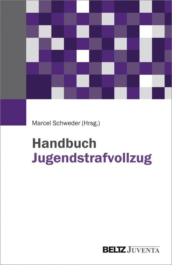 Handbuch Jugendstrafvollzug als Buch